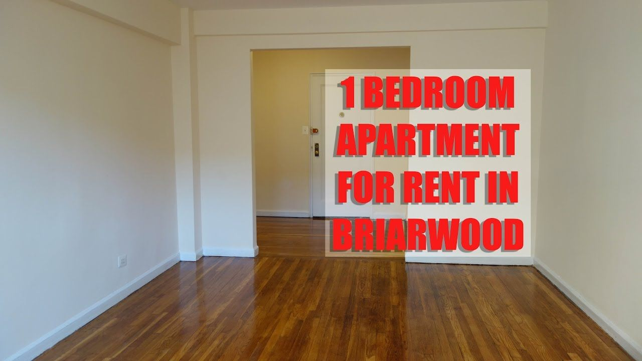 Large and all new 1 bedroom apartment for rent in ...