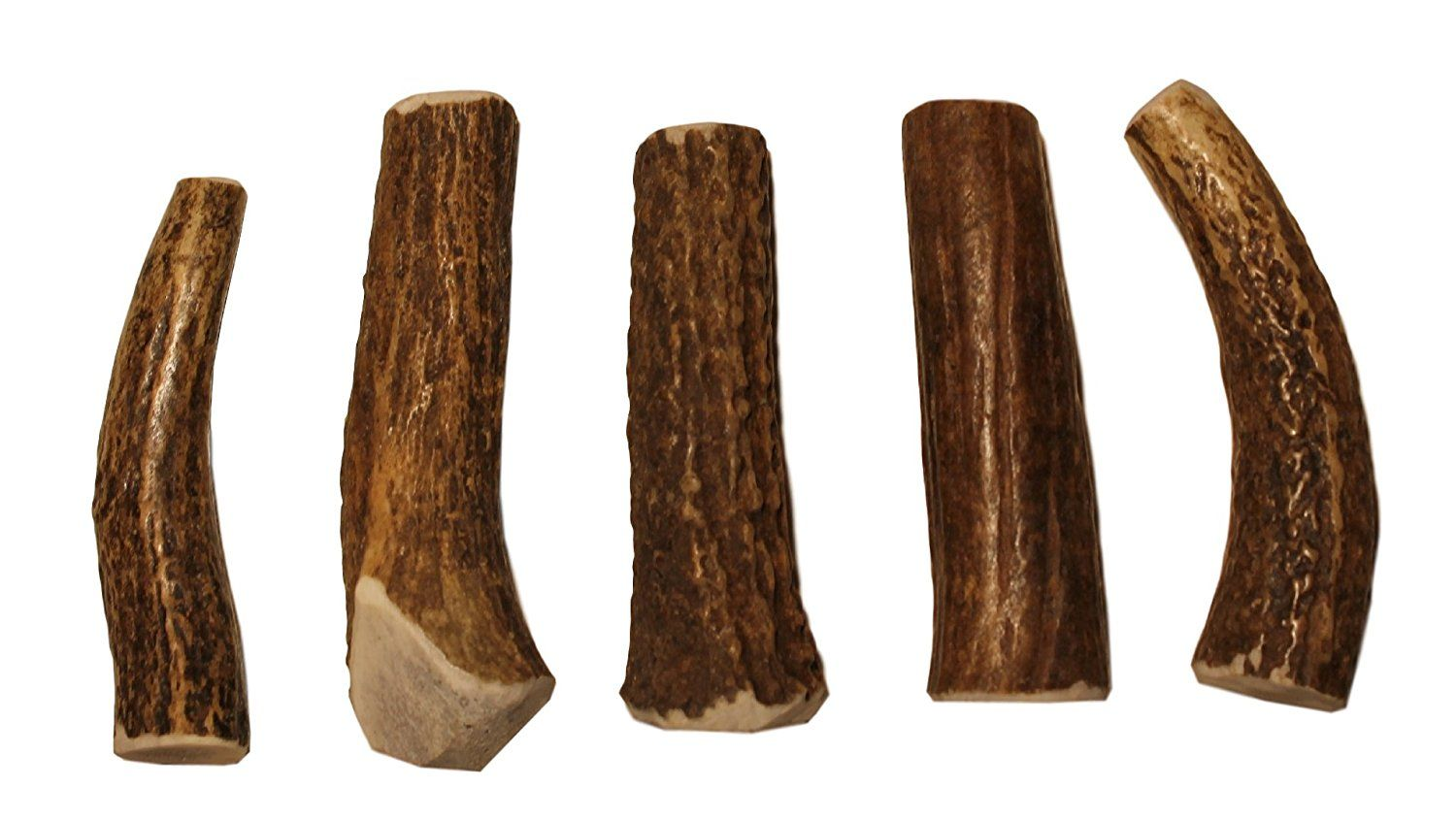 X Small Whole 5 Piece Value Pack Grade A Premium Elk Antler