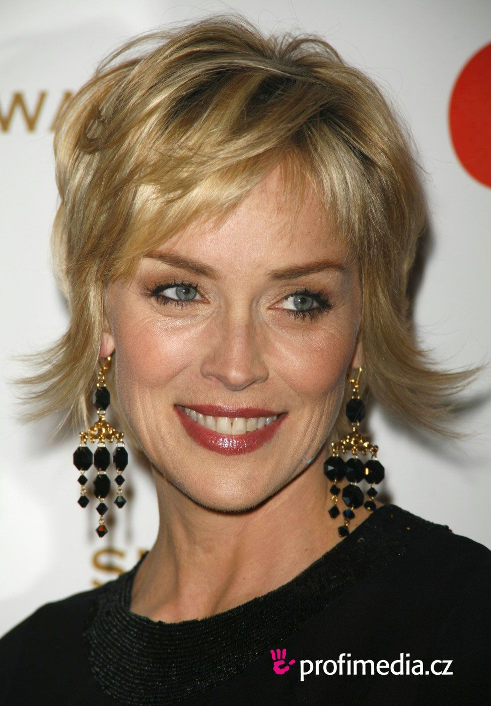 Sharon Stone Hairstyles Prom Hairstyle Sharon Stone Sharon Stone Coiffure Coiffures Cheveux Gris Cheveux