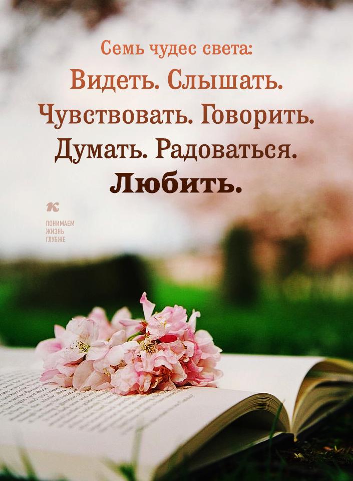 довольствовался открытки позитивные о мудрости уйма
