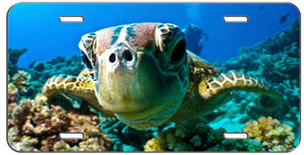 LICENSE PLATE BABY TURTLE UNDER THE SEA AUTO TAG