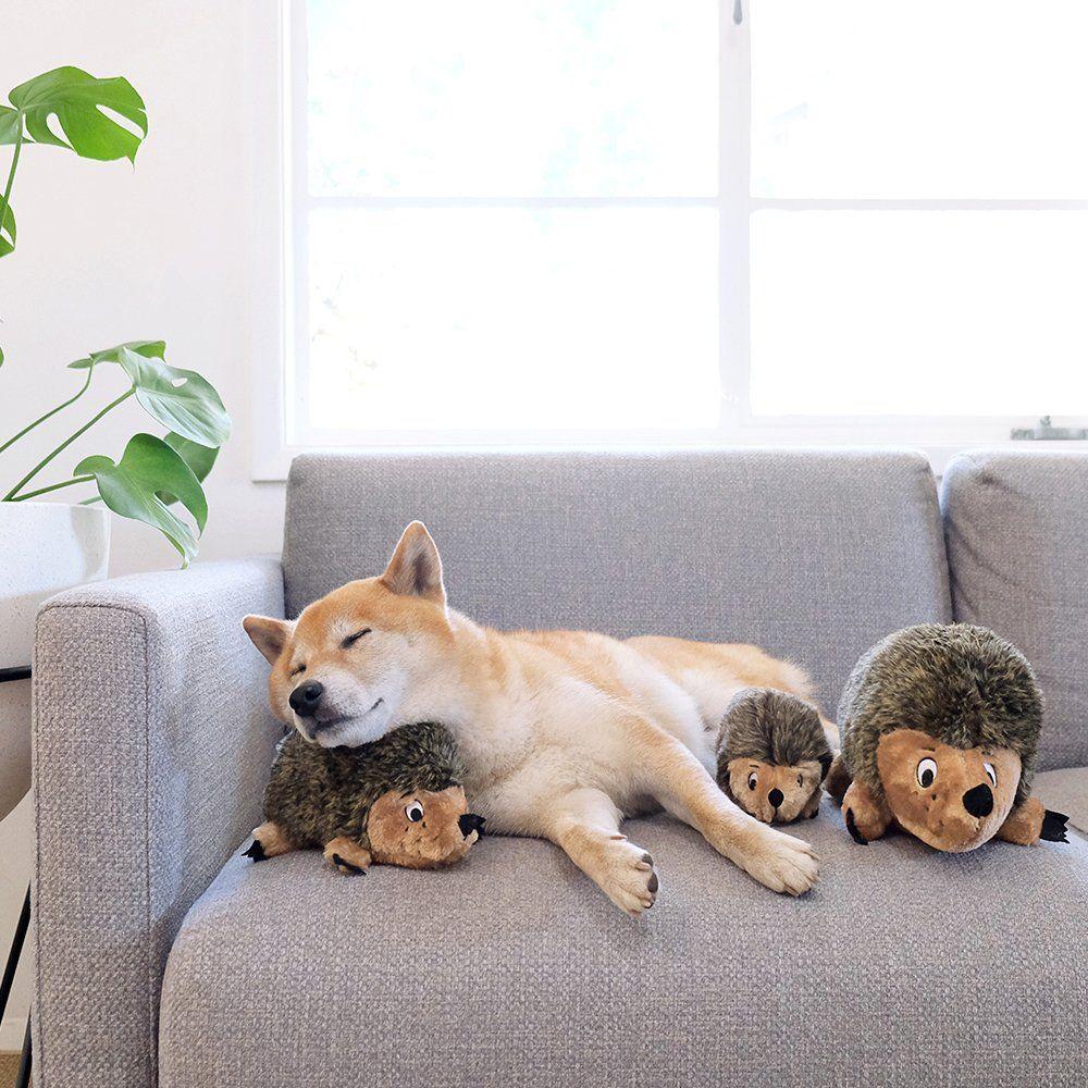 Outward Hound Kyjen Hedgehogz Squeak Toy for Dogs * Find