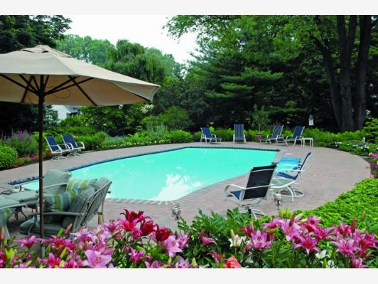 Pool With Great Landscaping Beautiful Backyards Dream Backyard Pool Landscaping
