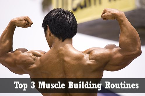 Top 3 #Muscle Building Routines | Workout Trends