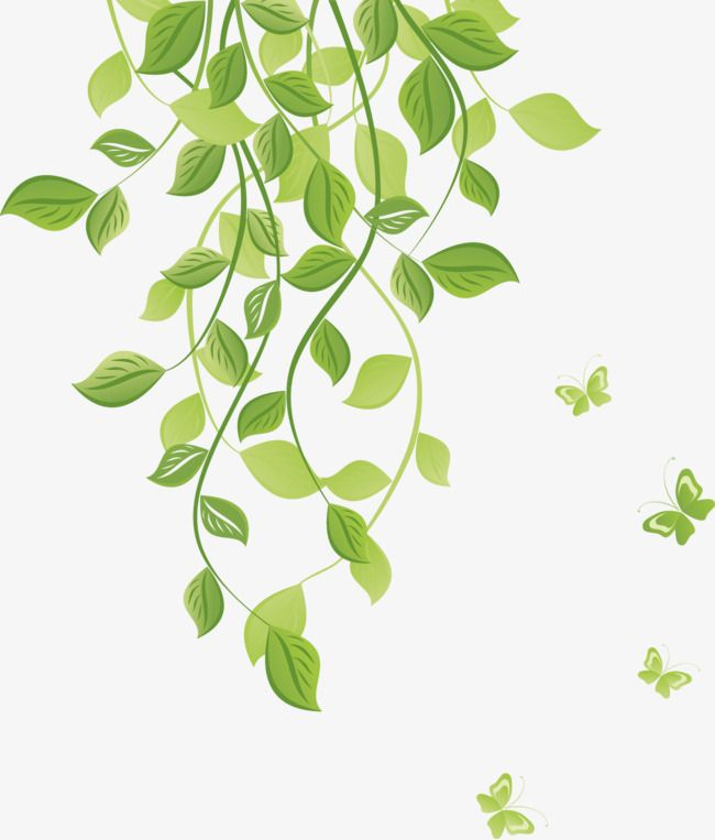 Green Butterfly Pattern Green Leaves Leaves Flower Vine Png Transparent Image And Clipart For Free Download Garden Wall Art Vector Patterns Design Pattern Wallpaper