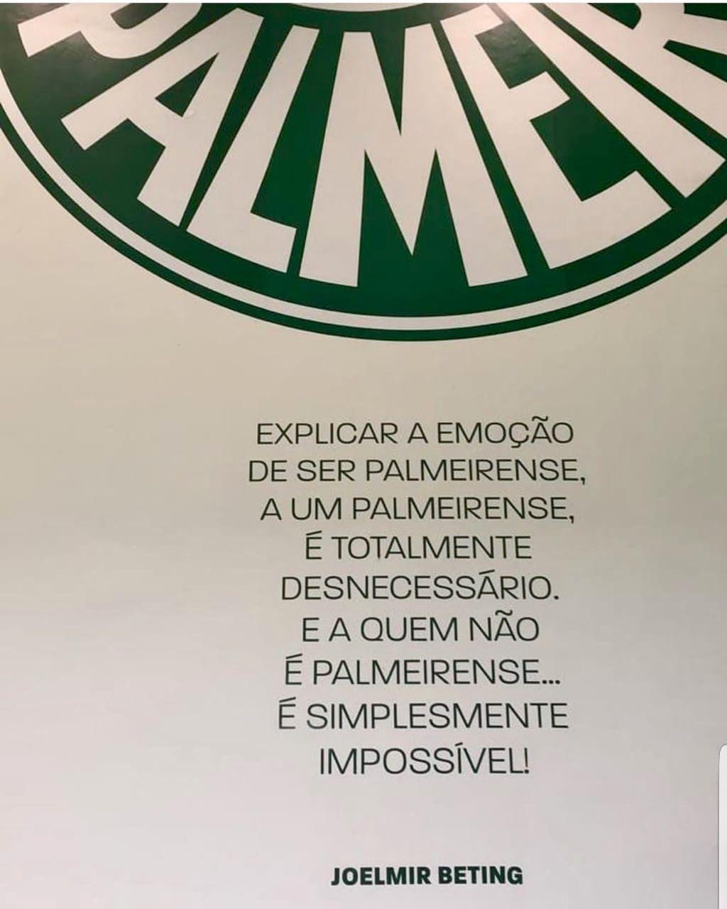 a8f2545028 Pin de Lucas Santos em Verdão
