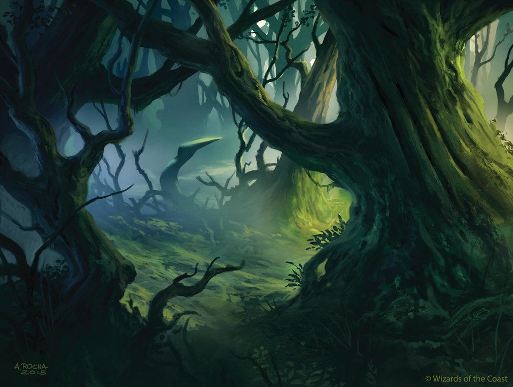 MTG - Shadows Over Innistrad - Basic Land - Forest by andreasrocha ...