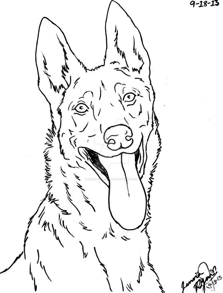 Kleurplaten Honden Duitse Herder.Dutch Shepherd Dog Lineart By Canis Simensis Dieren