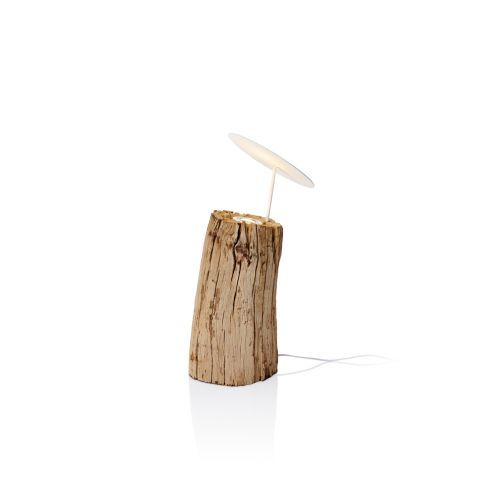 treibholzbeleuchtung wood contemporary drift wood floor lamp new lighting collection