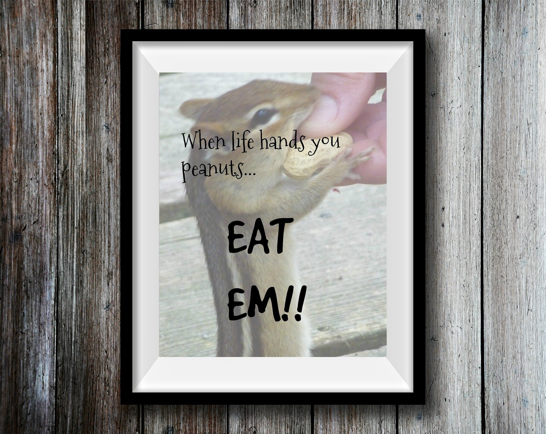 Photography prints inspirational quote prints chipmunk