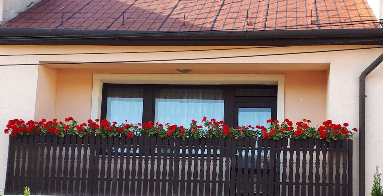 05deeda998c7 Barack színű ház piros muskátlikkal. | Dream Home | Muskátlik, Ablak ...