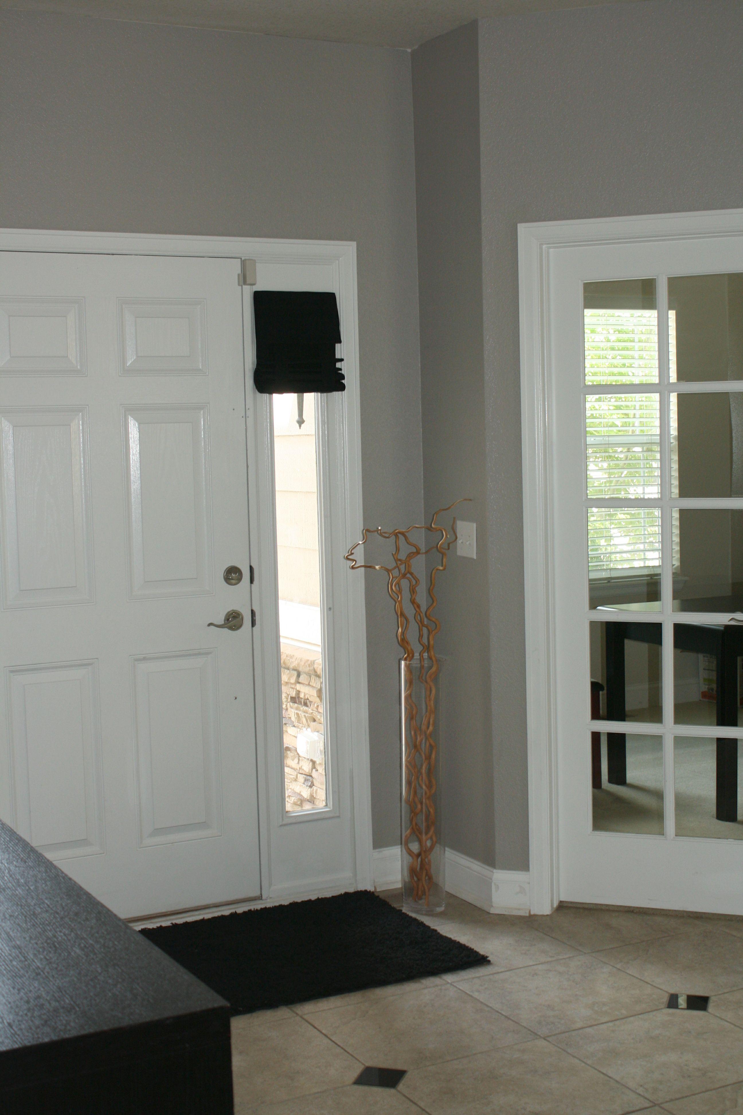 front door side windows