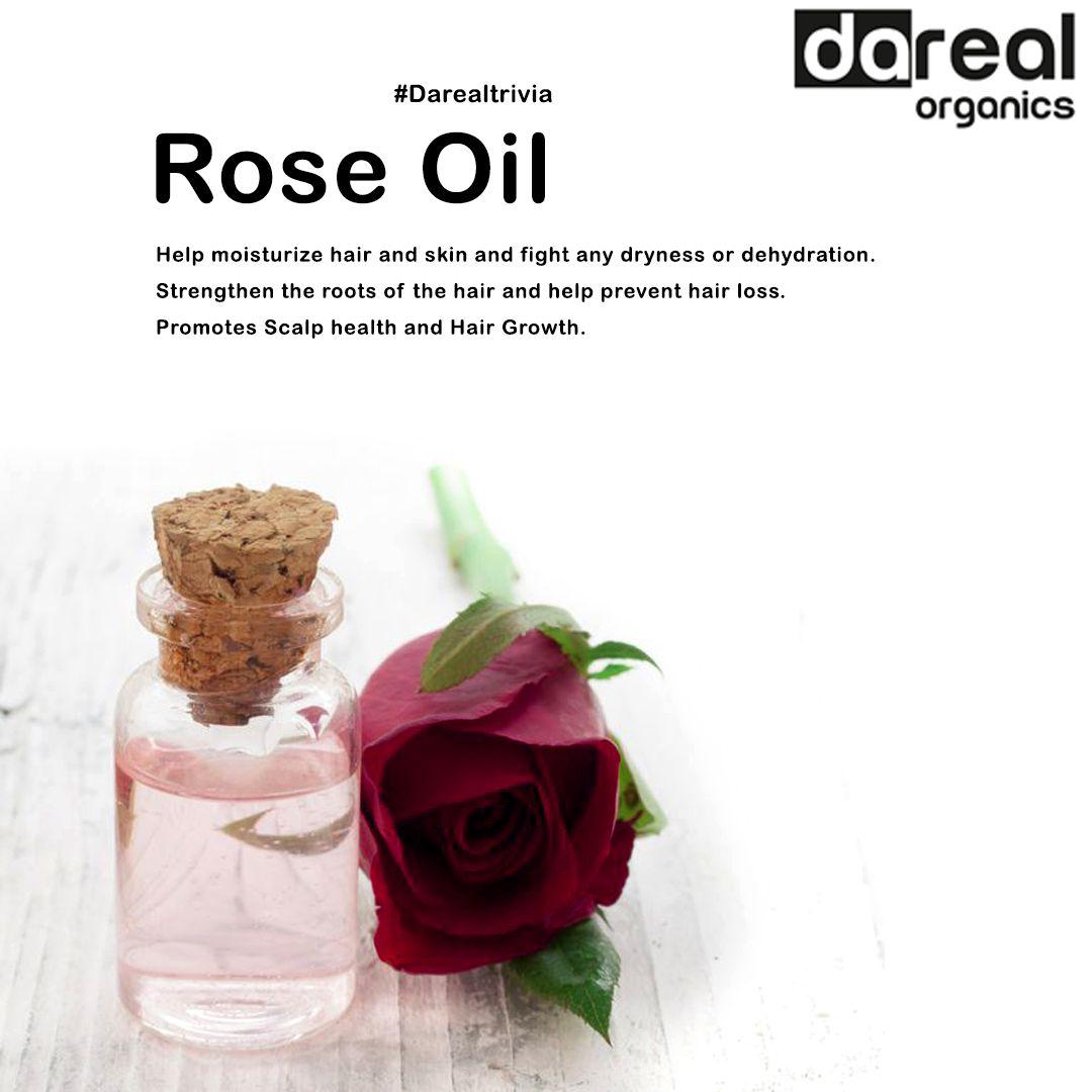 Benefits Of Rose Oil Help Hair Loss Moisturize Hair Rose Oil