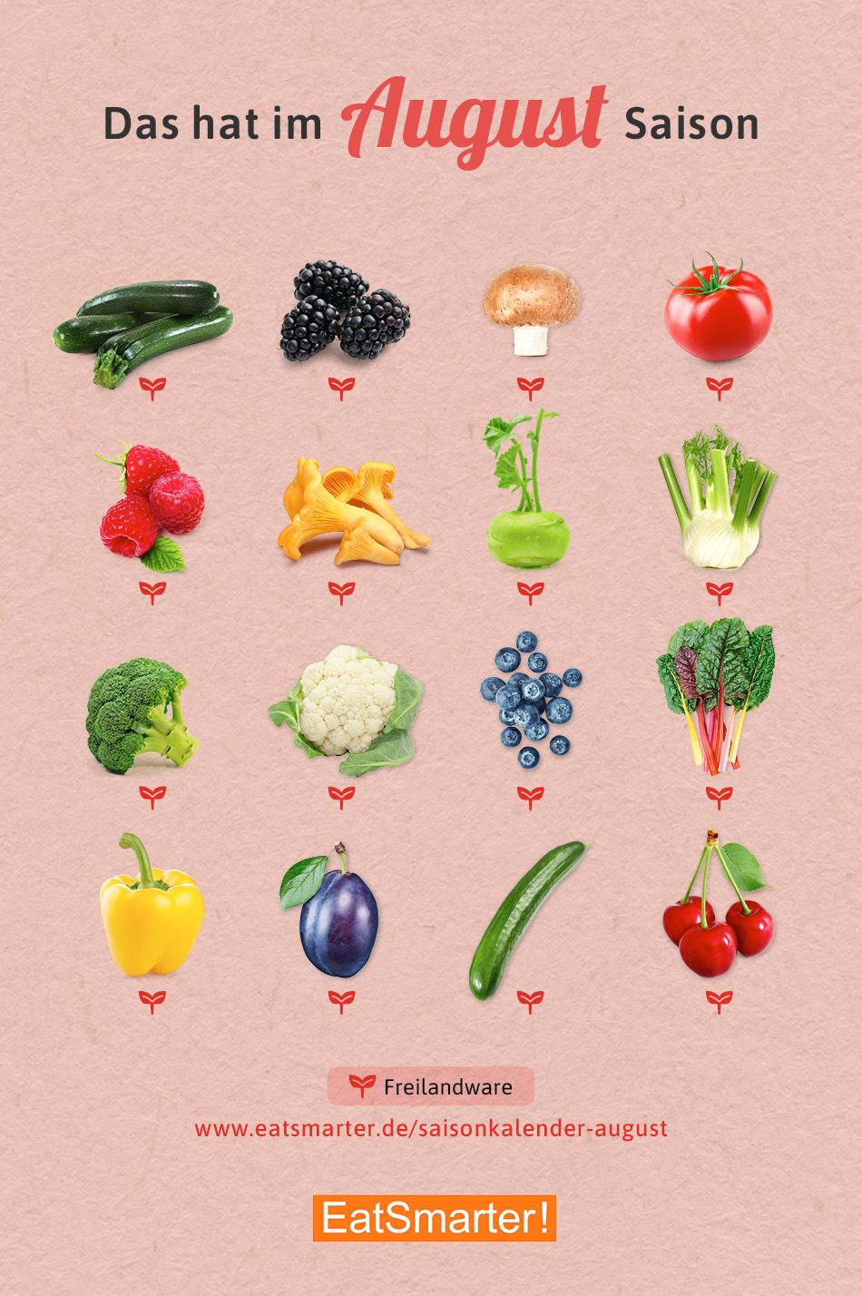 17+ Saisonkalender August Obst & Gemüse   Saisonkalender gemüse ... Fotografie
