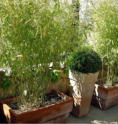 un petit jardin de village avec terrasse jardins de. Black Bedroom Furniture Sets. Home Design Ideas
