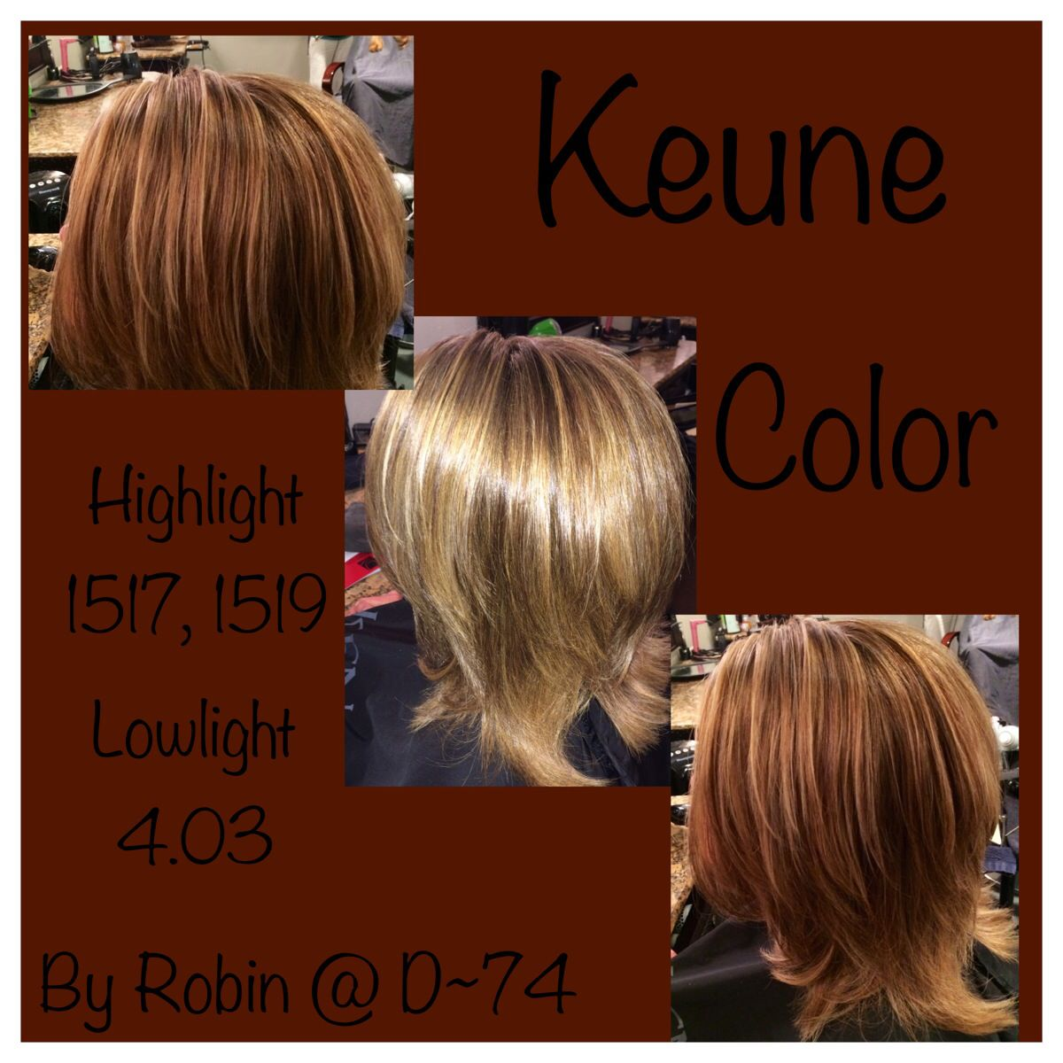 Keune Color Highlights Low Lights Colored Highlights Dream Hair About Hair