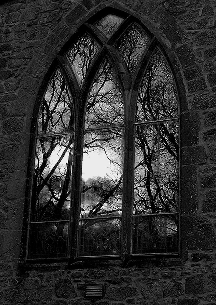 Gothic Arched Window I Adore The Reflection Of Trees In