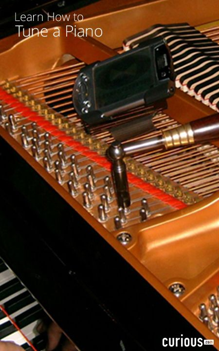 If you have a piano that you love playing at home, and don't want to have to rely on a professional tuner, join in on this piano tuning course and learn how to do it yourself!