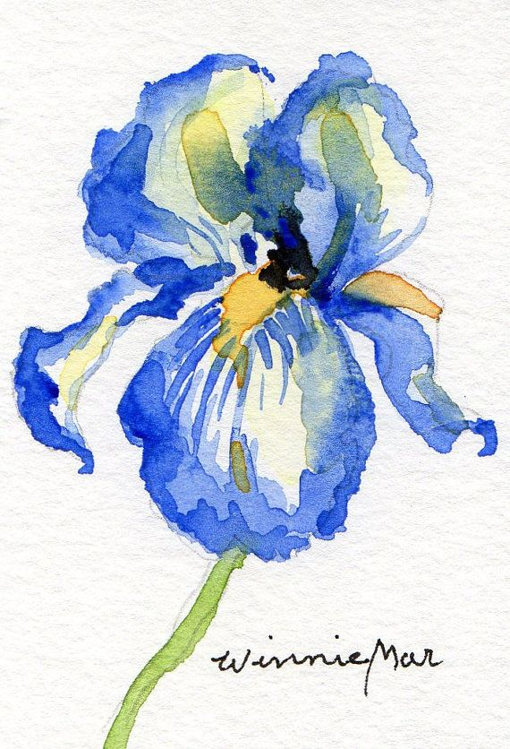 Blue Iris Aceo Small Original Watercolor On Heavy Watercolor Paper
