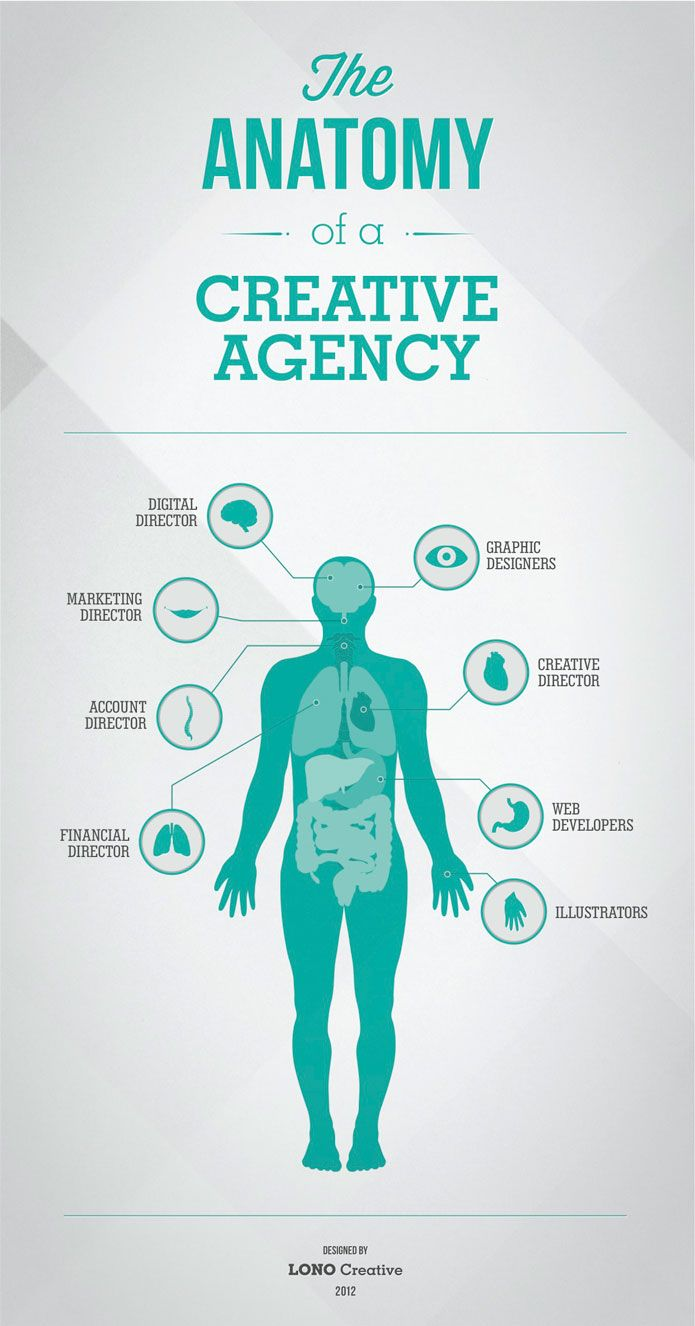 The Anatomy Of A Creative Agency Infographic Untapped Pinterest