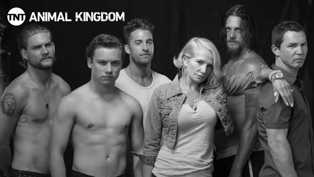 animal kingdom tv show season 3 release date