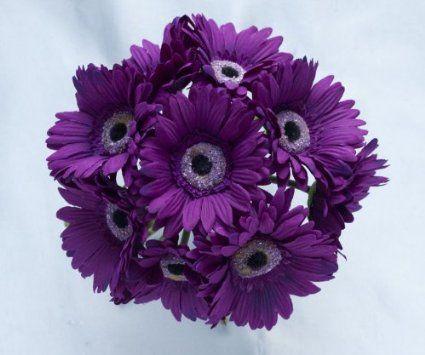Amazon Com Purple Silk Gerbera Daisies Bridal Bouquet With