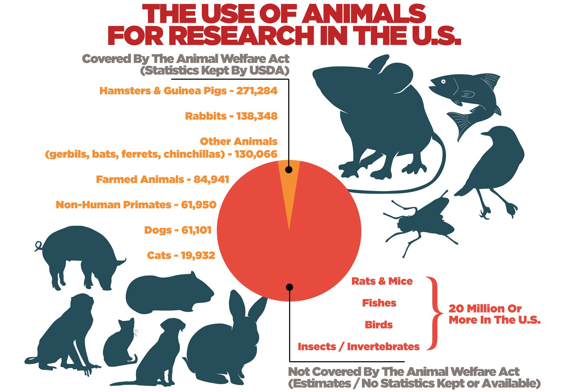 Research Animal Fundamentals Via Faunalytics 2017 Information And Statistics About The Use Of Animals Animal Welfare Act Animal Experiments Animal Advocacy