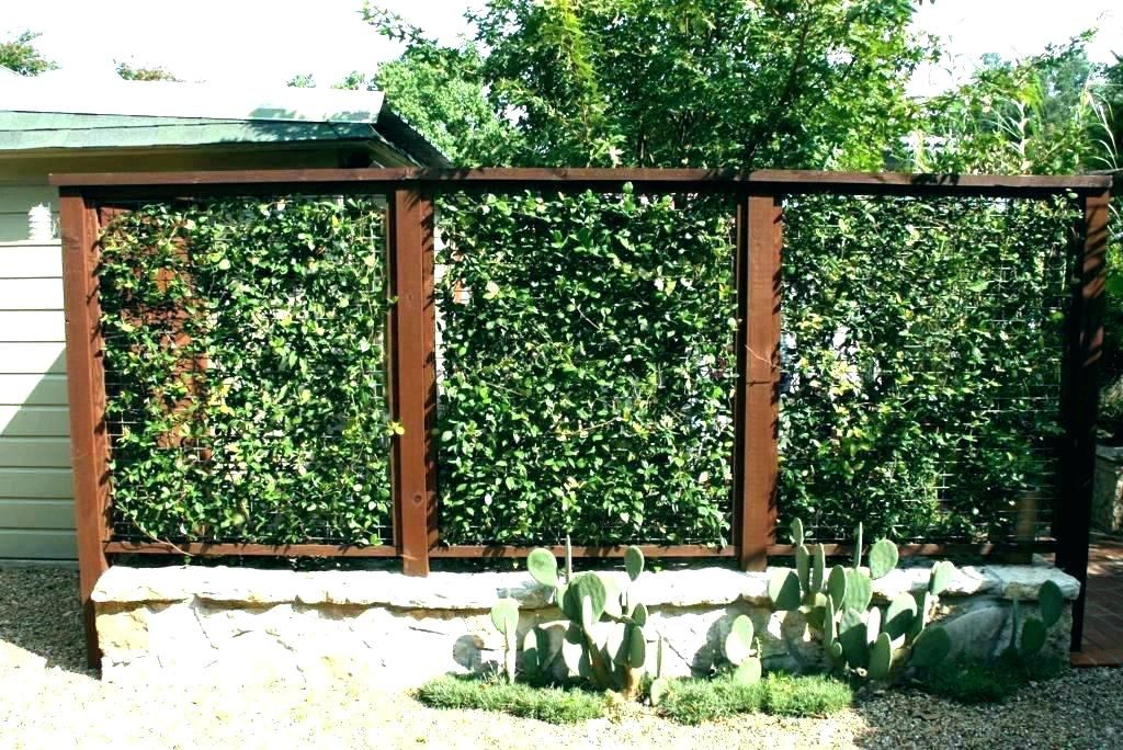 Pin by Tracy Klein on Garden Sustainability Projects Pinterest