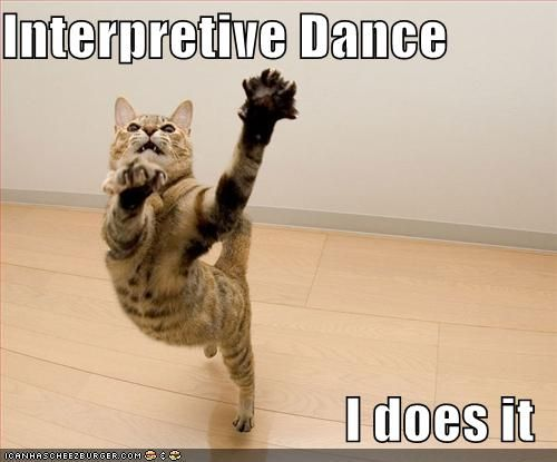 Untitled | Interpretive dance, Funny dance quotes, Dancing cat
