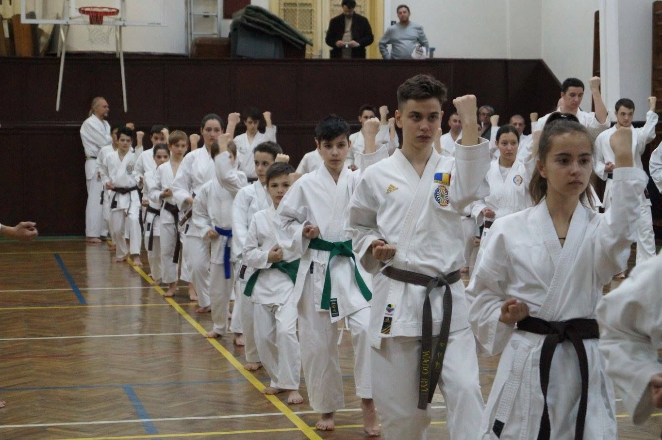 club karate sector 3