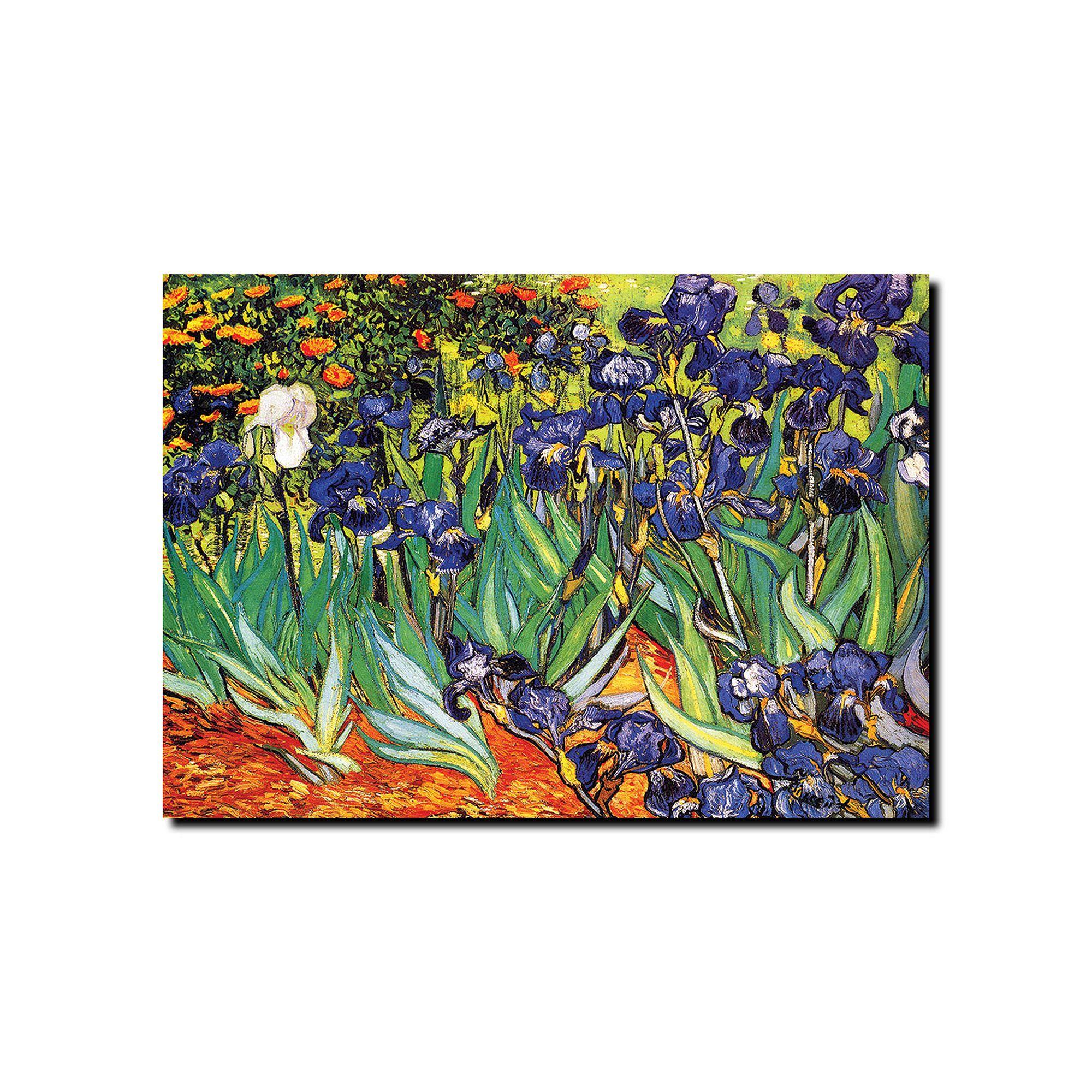 Irises at Saint-Remy Canvas Wall Art by Vincent van Gogh, Multicolor