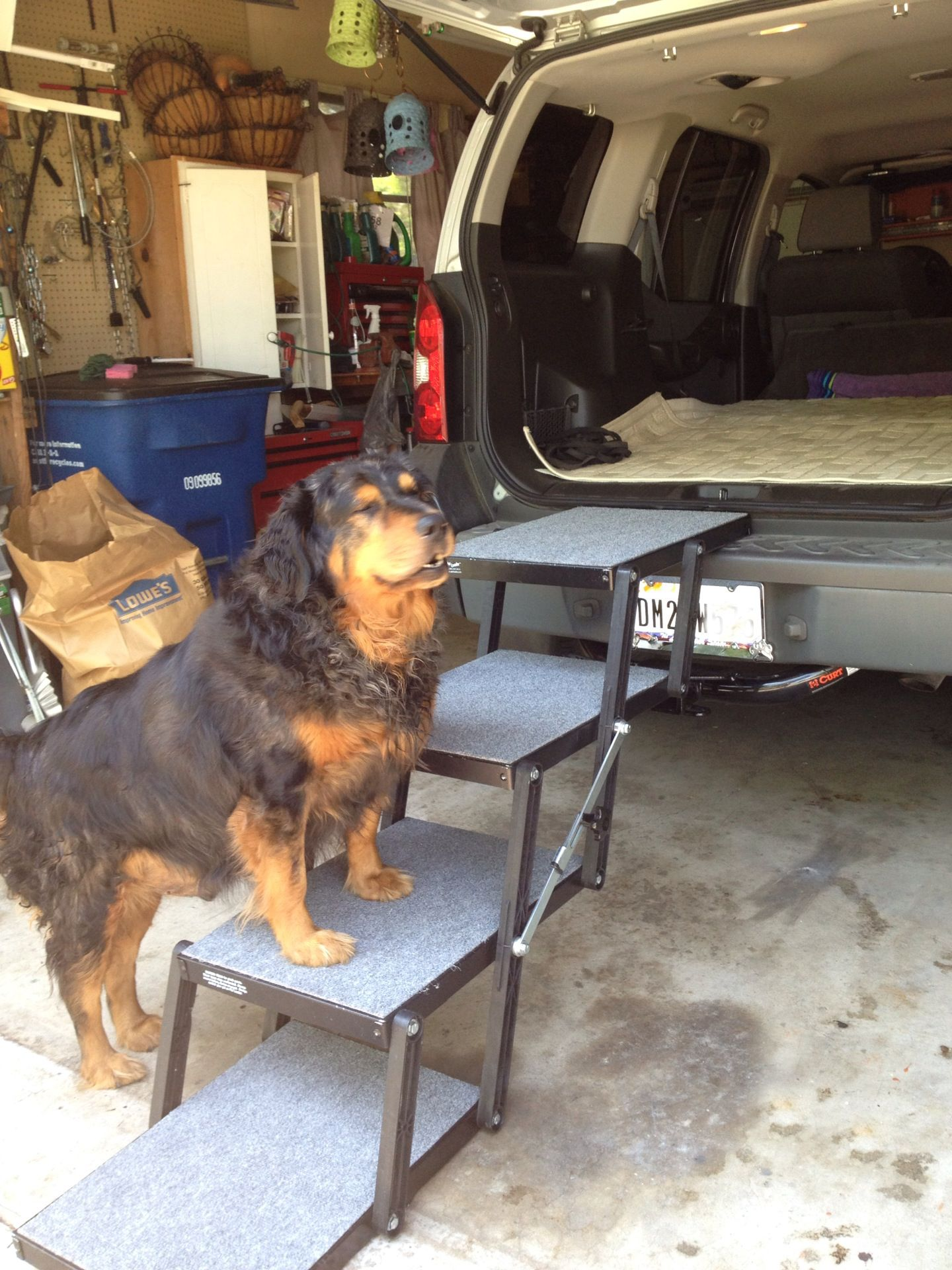 Superior Dog Steps for Vehicles and More Made in the USA
