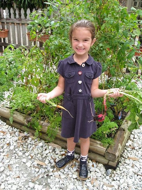 Vegetable planting guide by month for south florida - Florida vegetable gardening guide ...