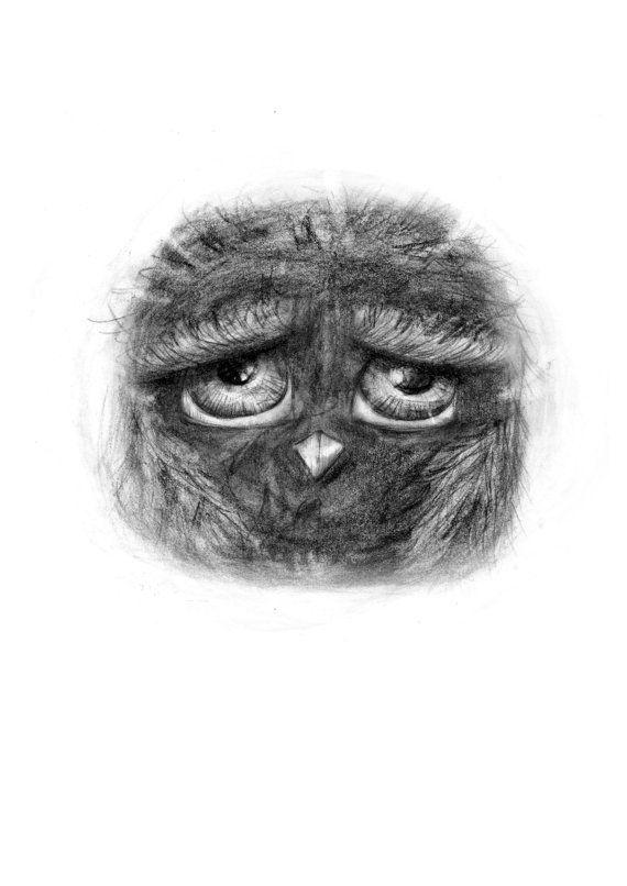 Owl wall art owl illustration owl decor pencil by annmarireigstad