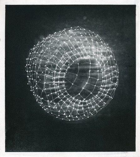 Anna Hepler  Plexigravure001  2006  photogravure on Hannemule copperplate paper
