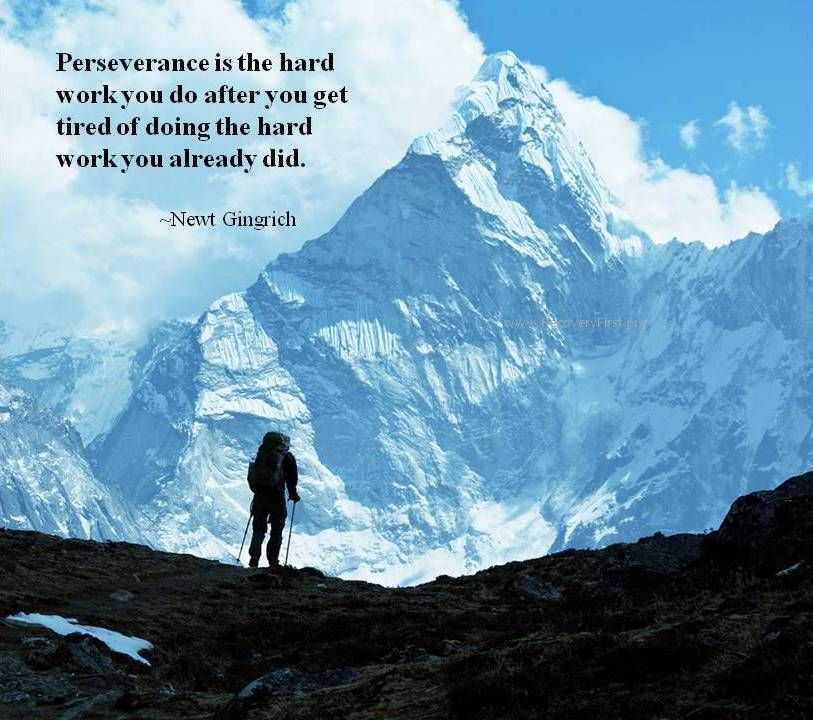 Perseverance Is The Hard Work You Do After You Get Tired Of Doing