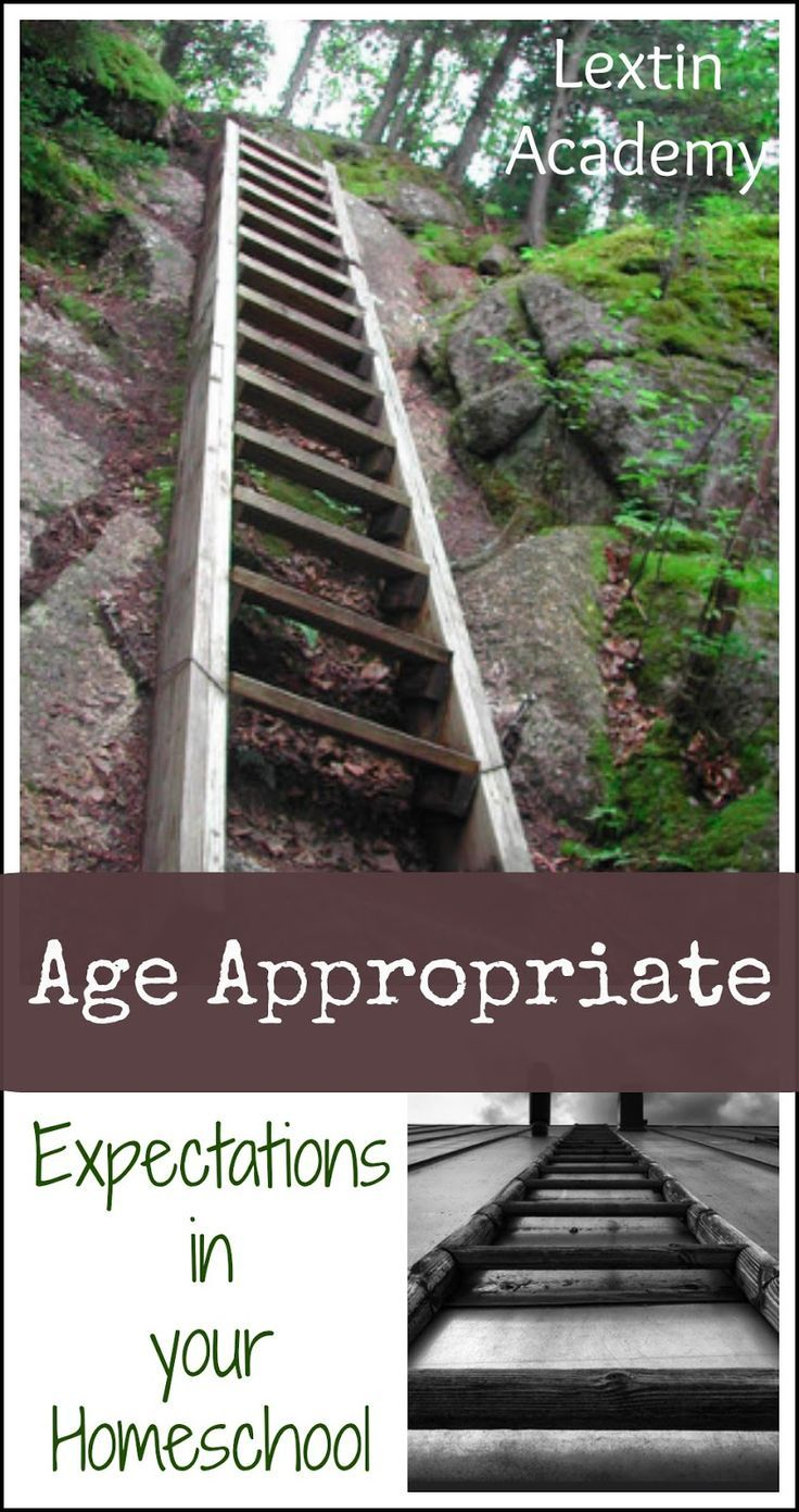 Lextin Academy of Classical Education: Developing Age Appropriate Expectations for Your Homeschool Understanding a child's learning abilities and knowing what skills are age appropriate are critical as a homeschool mom or teacher. Here are some guidelines