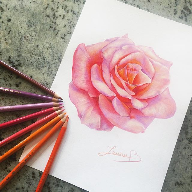 Drawing Done At 14 Years Old By Laurab Draw Flowerdrawings Draw