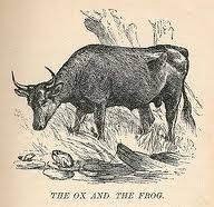 Read The Story The Frog And The Ox Completed With Online Quiz