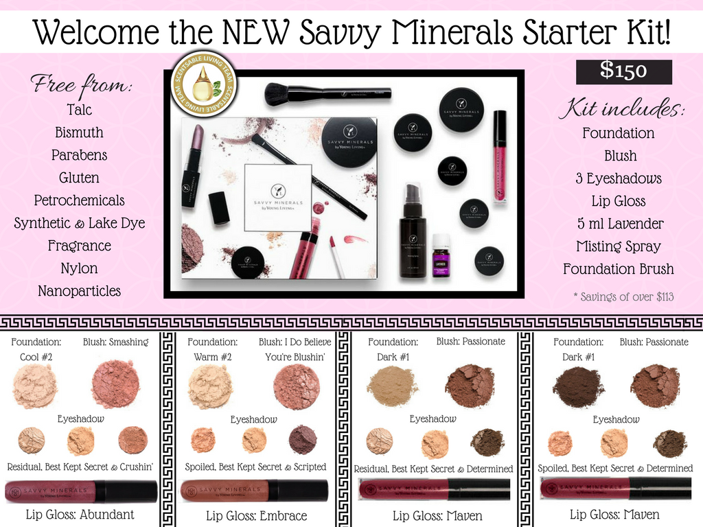 Savvy Minerals Starter Kit This makeup is top notch and