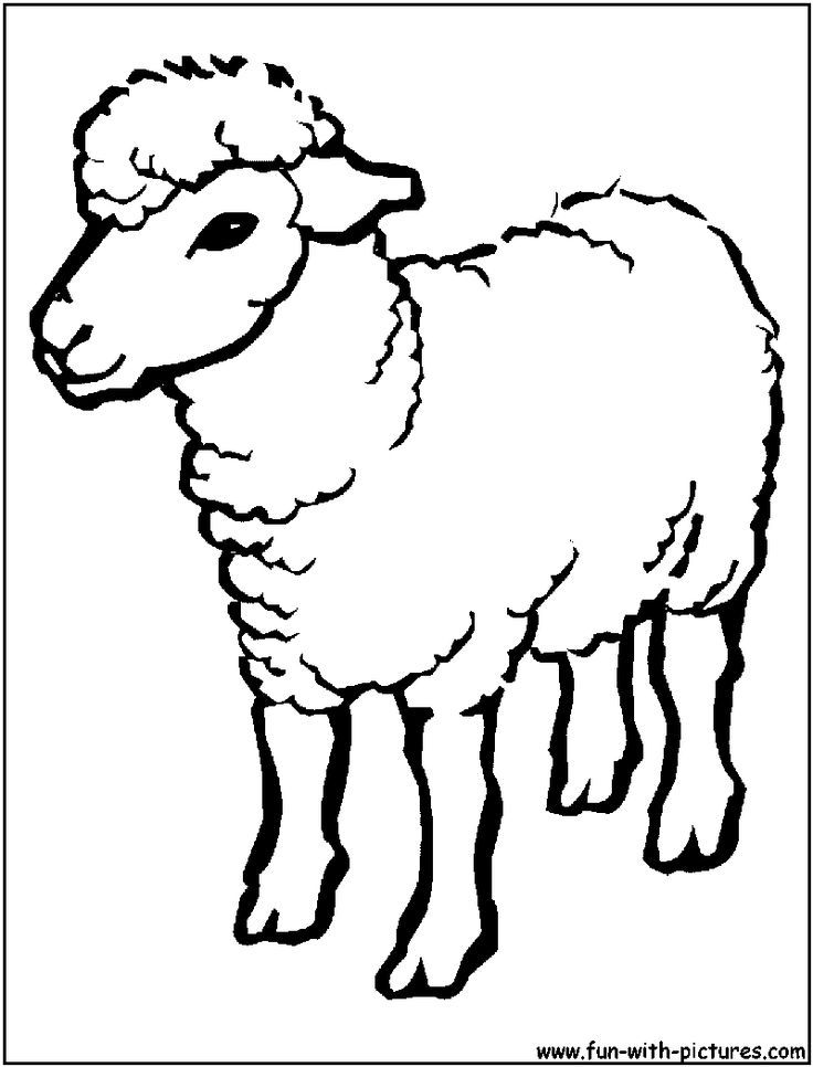 Sheep Clipart Black And White : sheep, clipart, black, white, Sheep, Outline, Drawing, Coloring, Cartoon, Images, Funny, Animal, Pages,