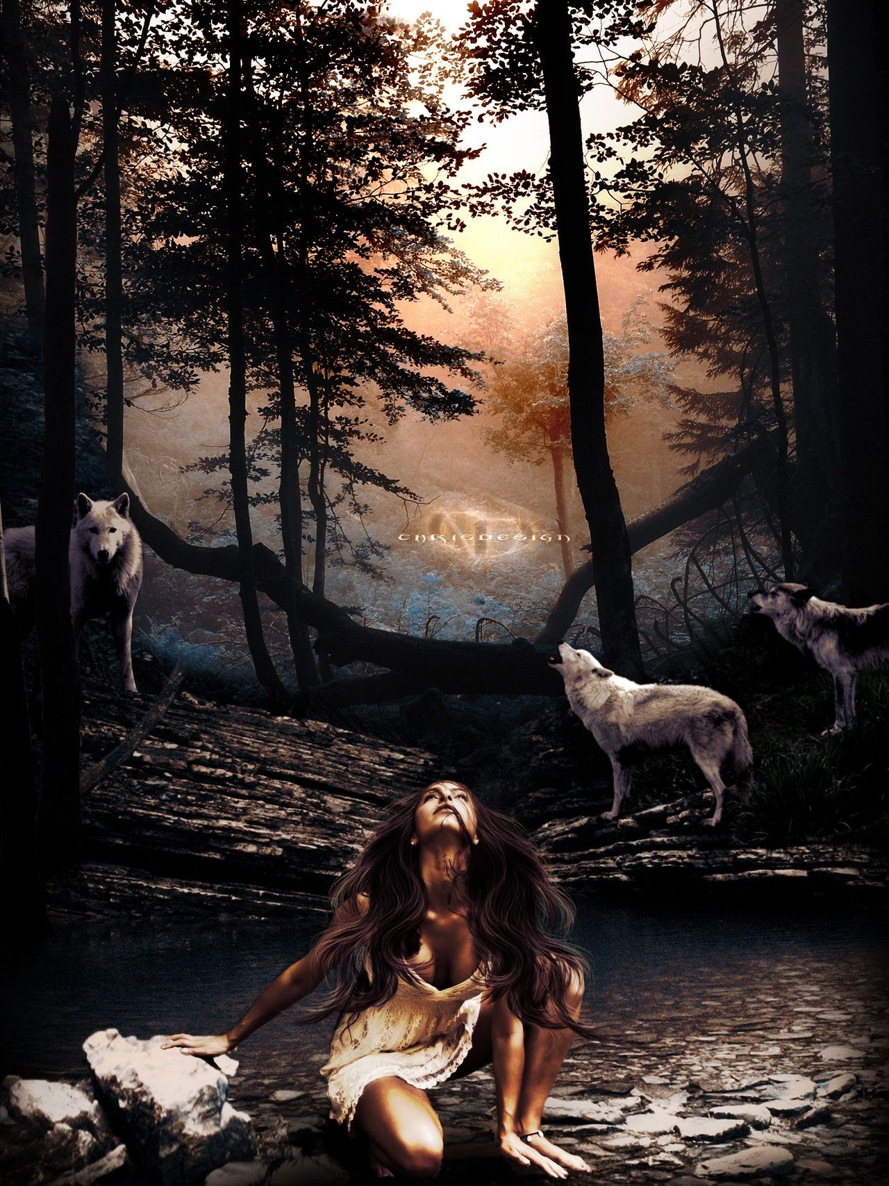 Woman Of Wolves By Chrisdesign47Deviantartcom On -6758