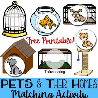Pets & Their Homes Matching Activity Preschool