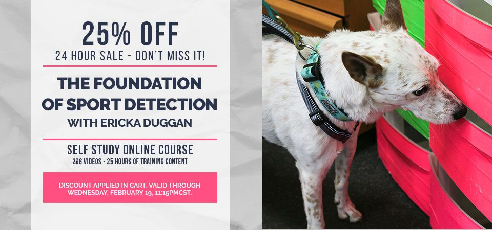 25 Off The Foundation Of Sport Detection With Ericka Duggan Self