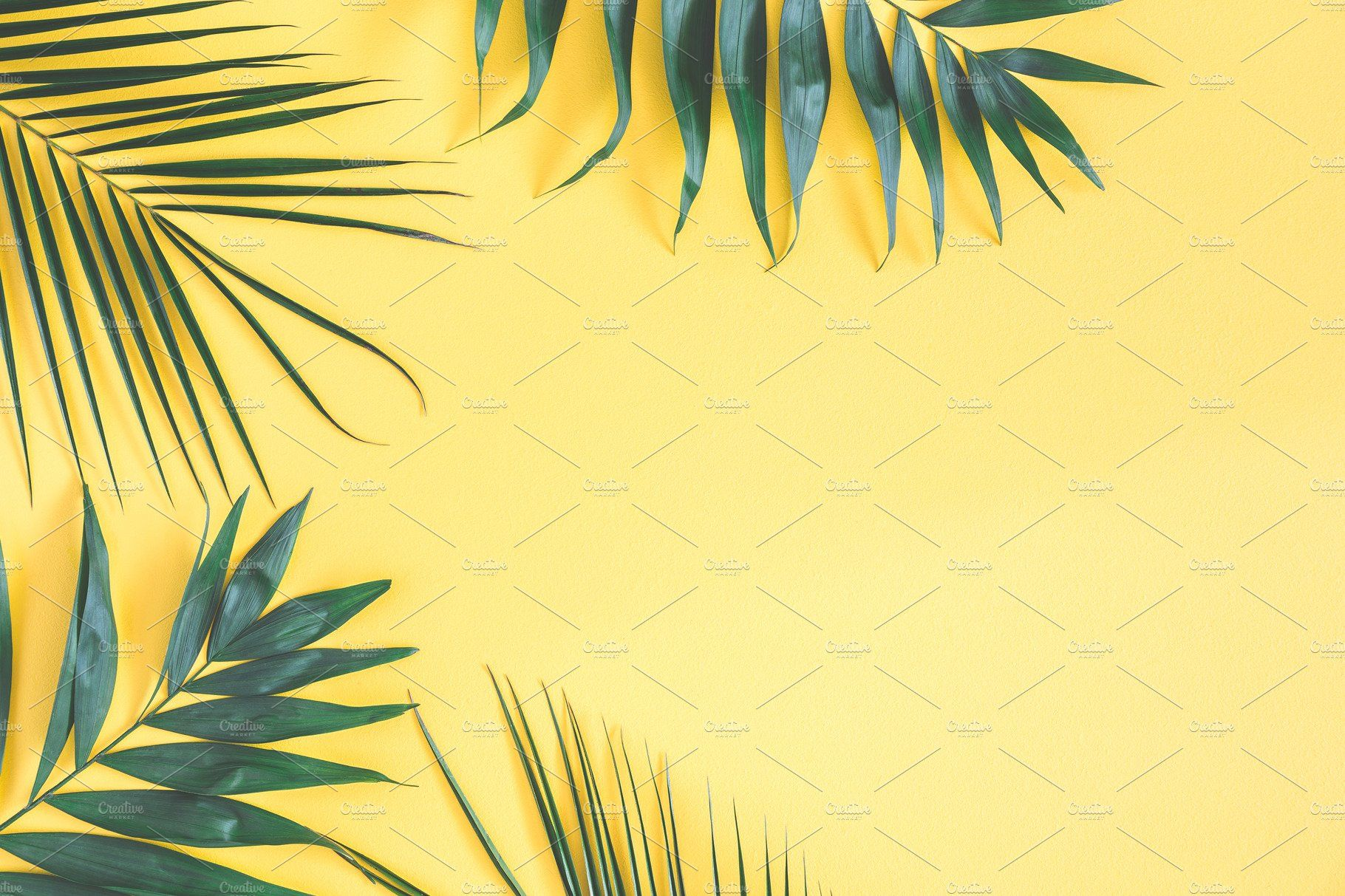 Tropical palm leaves Yellow plants, Plant wallpaper