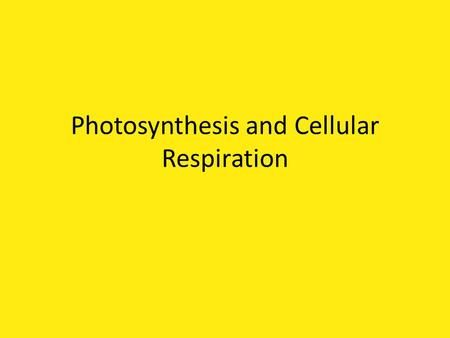 Photosynthesis and Cellular Respiration. Photosynthesis Definition: process in which plant cells convert the energy from sunlight into chemical energy.