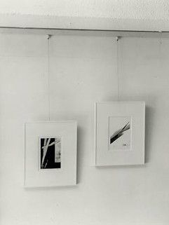 Picture Hanging Systems And Hardware Art Hanging System Picture Hanging Hanging Artwork