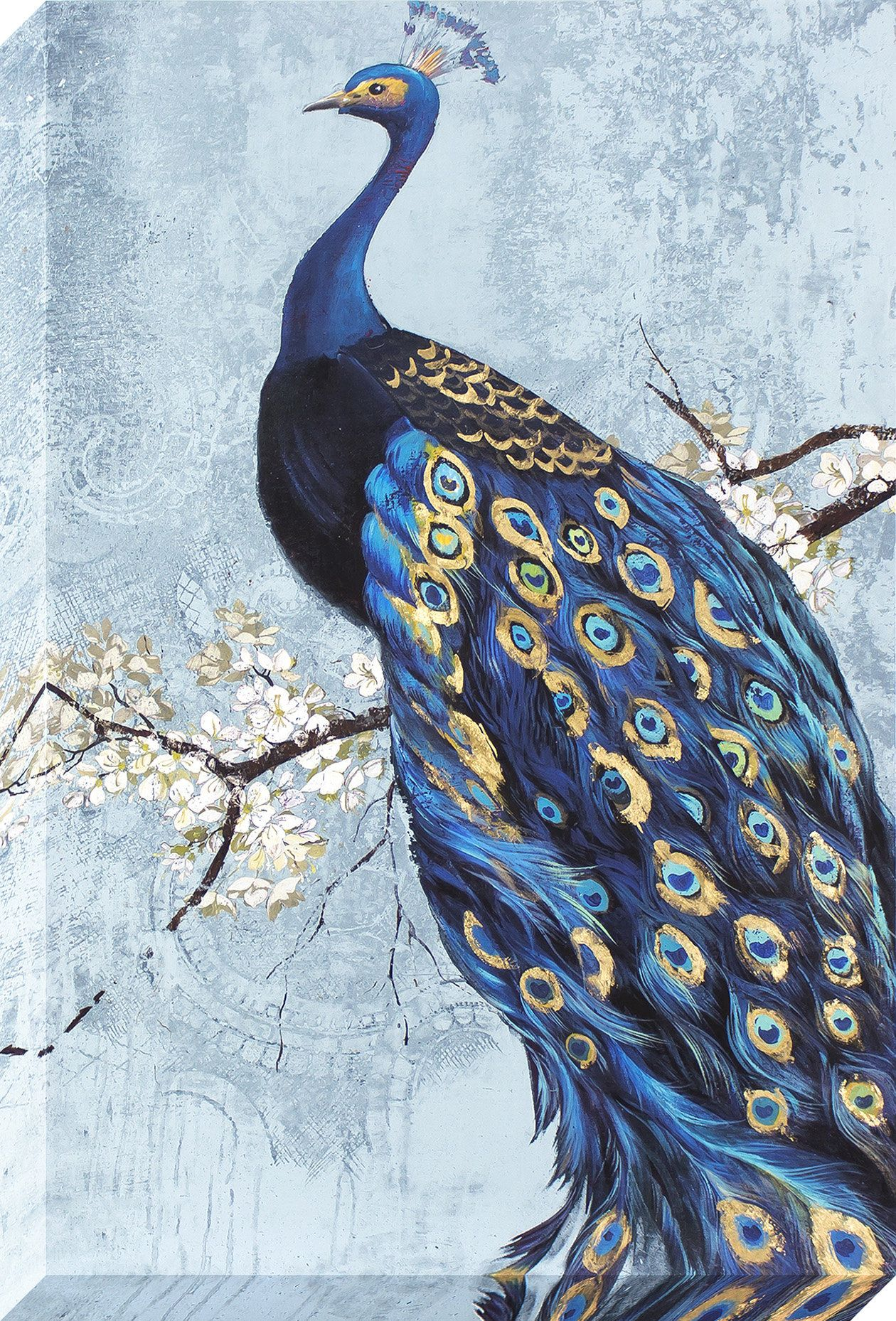 Ornate Peacock Graphic Art on Wrapped Canvas