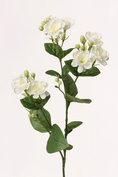 Silk jasmine branch white jasmien flower branch artificial silk jasmine branch white jasmien flower branch artificial mightylinksfo