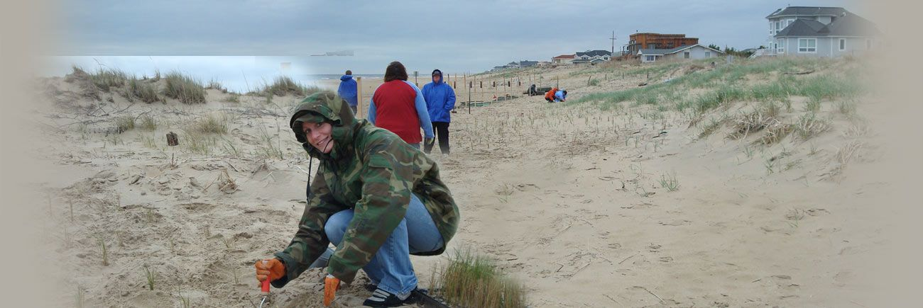 National Aquarium Conservation Initiatives Virginia Beach Costa De Eilidad Tormentas